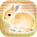 治愈兔兔养成